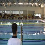 제29회 전국종별핀수영선수권대회